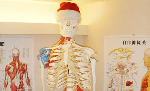 サンタクロースの骨格模型